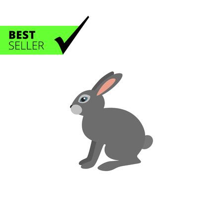 timid: Grey hare icon