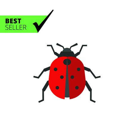 ladybird: Multicolored vector icon of ladybird, top view
