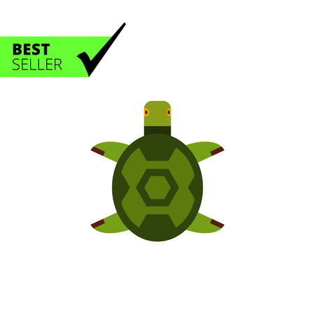 land turtle: Multicolored vector icon of turtle, top view