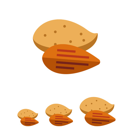 nutshell: Multicolored vector icon of peeled almond and one in nutshell
