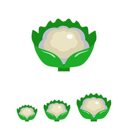 cauliflower: Multicolored vector icon of cauliflower curd with green leaves