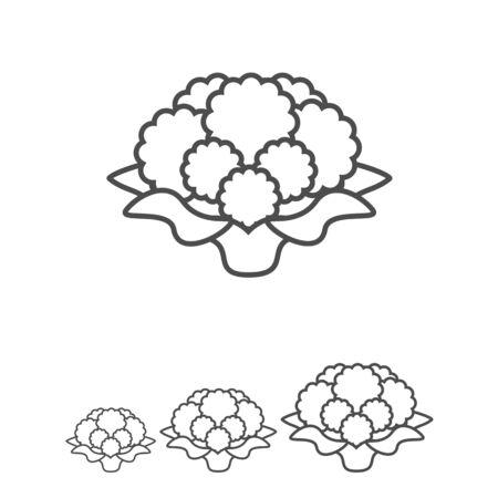 curd: Icon of cauliflower curd Illustration