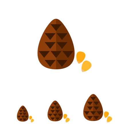 pine nut: Multicolored vector icon of cone and pine nuts