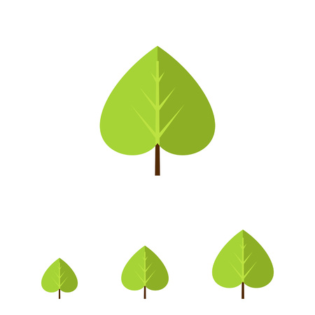linden tree: Multicolored vector icon of green linden leaf