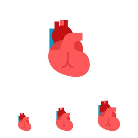 vein valve: Multicolored vector icon of human heart, internal organ