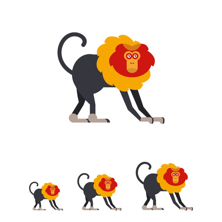 macaque: Multicolored vector icon of lion-tailed macaque with orange and yellow mane Illustration