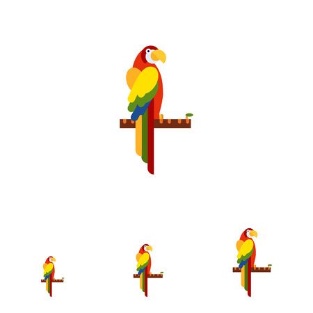 head back: Vector icon of colorful parrot sitting on tree branch and turning head back