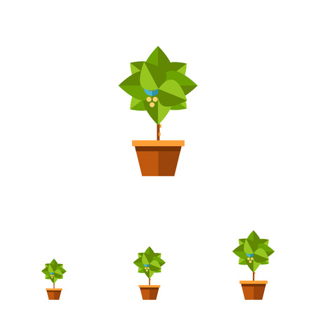potting soil: Multicolored vector icon of small blooming tree in pot Illustration