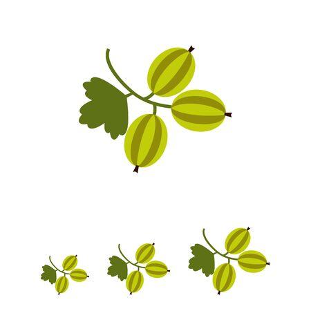 ripe: Vector icon of ripe green gooseberry bunch Illustration