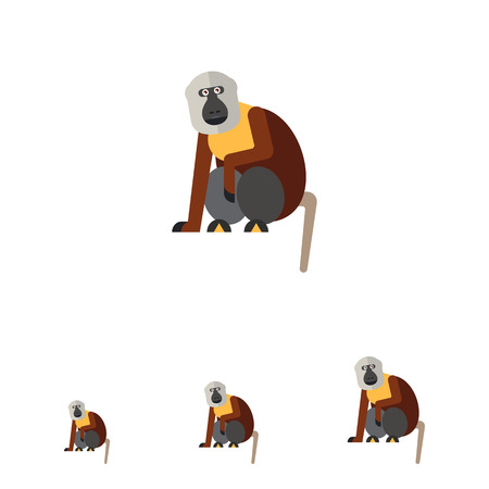 omnivore: Multicolored vector icon of sitting macaque monkey