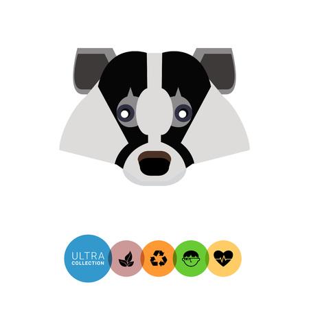 omnivorous: Multicolored vector icon of European badger head