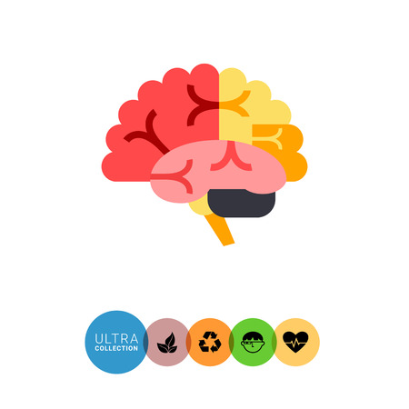 main idea: Multicolored vector icon of brain, organ of human nervous system