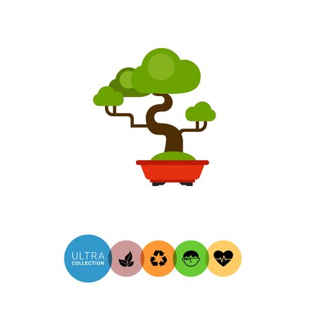 asian gardening: Vector icon of green bonsai tree in tub
