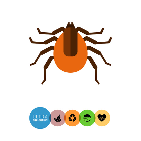 encephalitis: Multicolored vector icon of brown mite, top view Illustration