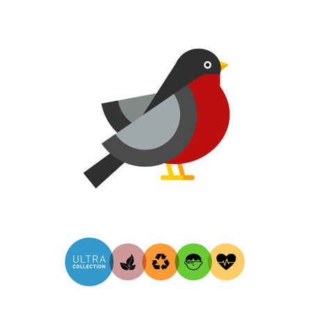 beine spreizen: Multicolored vector icon ofbullfinch, side view