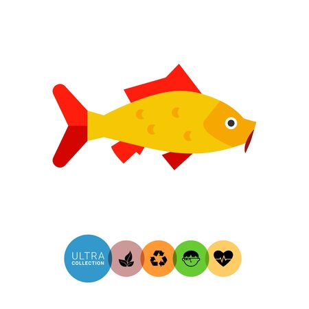japanese koi carp: Image of bright yellow Japanese koi carp with red fins