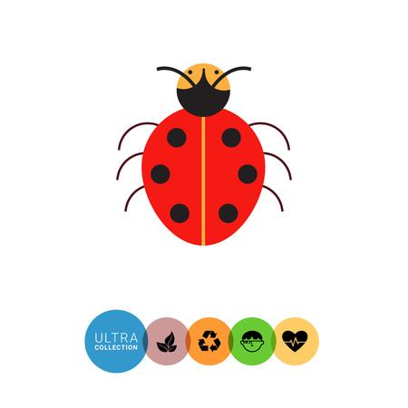 feeler: Multicolored vector icon of cartoon ladybird, top view