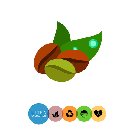 green coffee beans: Icon of two brown and one green coffee beans and two green leaves Illustration