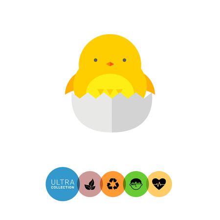 off white: Icon of little cute cartoon yellow chicken hatching off white egg Illustration