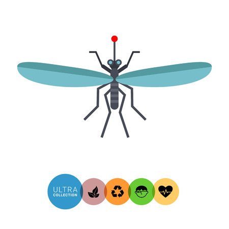 gnat: Multicolored vector icon ofmosquito and blood drop, top view Illustration