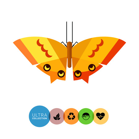feeler: Multicolored vector icon of orange butterfly with yellow stripes and spots