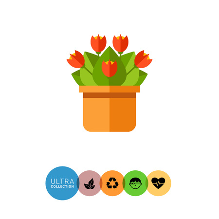 potting soil: Multicolored vector icon of red flowers in pot