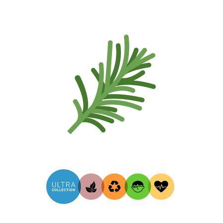 rosemary: Multicolored vector icon of fresh green rosemary