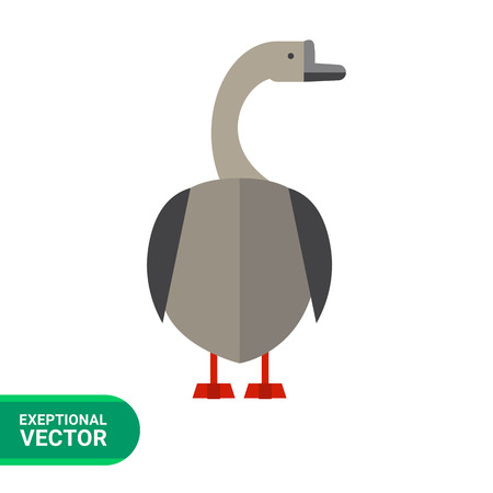 Multicolored vector icon of grey goose, back view