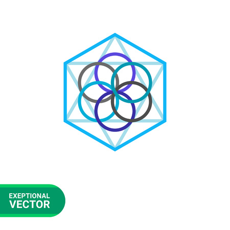 philosophy of logic: Multicolored vector icon of abstract geometric circle and polygon elements representing philosophy