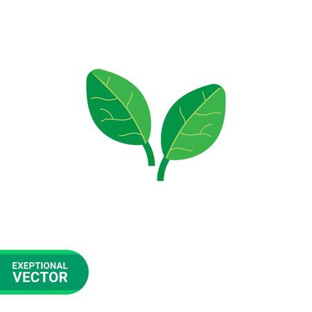 Vector pictogram van twee groene spinazie bladeren
