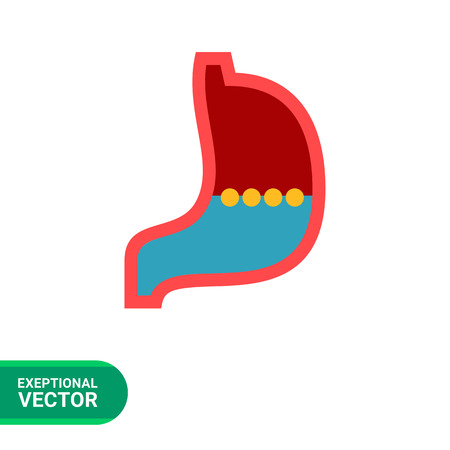 gastroenterology: Multicolored vector icon of stomach, internal organ of digestive system