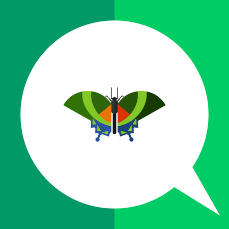Multicolored vector icon of green butterfly with blue stripes