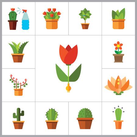 Blumen Vektor-Icons mit Aloe im Topf, Tulpe und Kaktus im Topf gesetzt. Dreizehn flache Ikonen