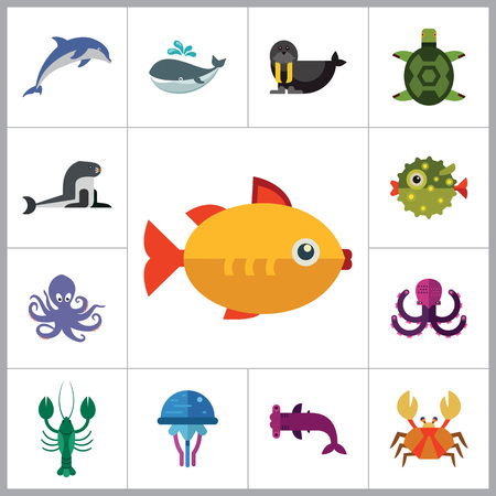 sea creatures: Sea creatures icons set. Thirteen vector icons of dolphin, turtle, sea lion and other sea creatures