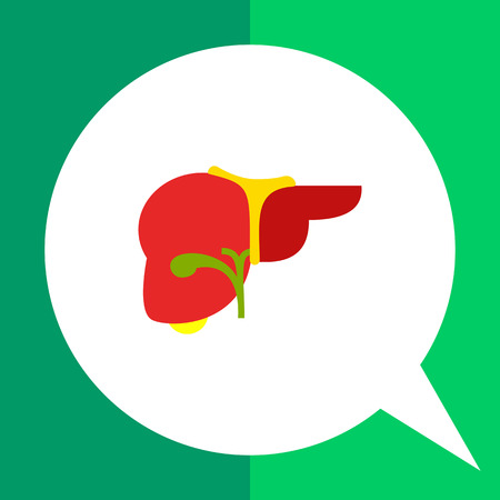 human liver: Liver flat icon. Multicolored vector illustration of liver, organ of human body