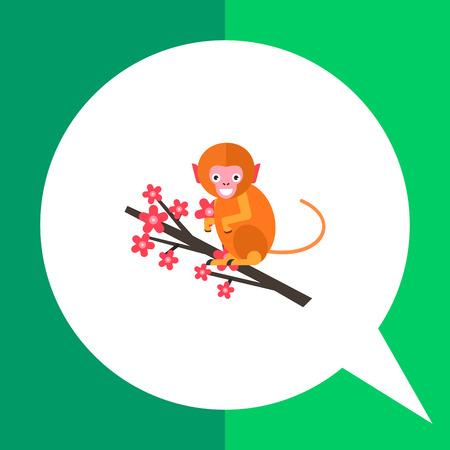 macaque: Image of cute orange Japanese macaque sitting on sakura branch