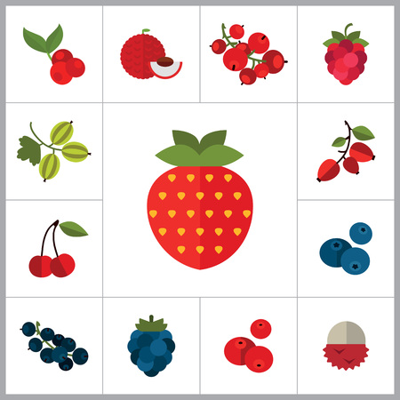 currant: Berry Icon Set. Cranberry Black Currant Blackberry Blueberry Dogrose Gooseberry Red Currant Raspberry Strawberry Cowberry Cherry