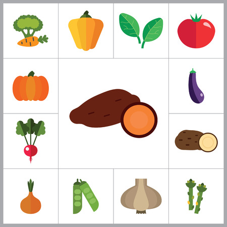 thirteen: Vegetables icons set with tomato, eggplant and radish. Thirteen vector icons Illustration