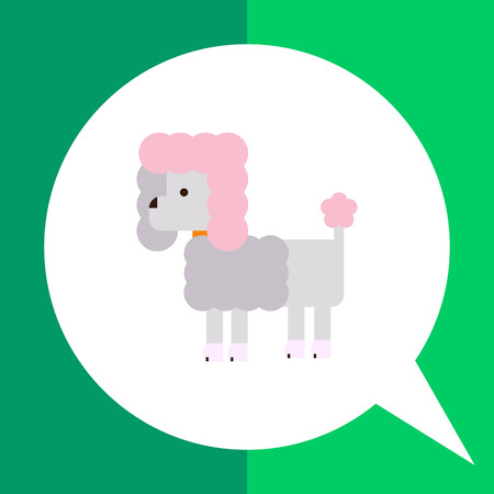 dog collar: Multicolored vector icon of poodlewith dog collar Illustration