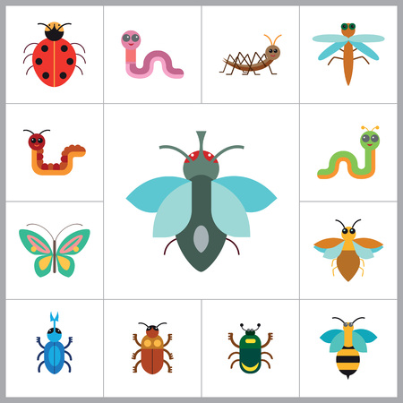 mite: Insects Icon Set. Ladybird Bee Beetle Mosquito Fly Brown Mite Butterfly Blue Beetle Mite Caterpillar Pink Worm Cute Caterpillar Ant