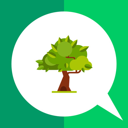 thick forest: Summer tree flat icon. Multicolored vector illustration of tree with thick leaves
