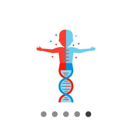 Silueta Humana Con La Molécula De ADN. Anatomía, La Escuela, La ...