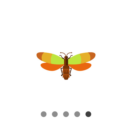 Vector icon of beetle with multicolored wings, top view Illustration