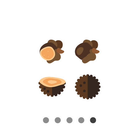 rare: Black truffles and their sections. Rare, delicious, forest. Mushroom concept. Can be used for topics like forestry, cooking, biology, agriculture.