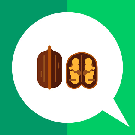 nutshell: Multicolored vector icon of whole  walnut and cut one