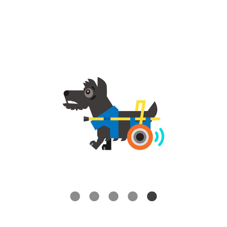 miserable: Multicolored flat icon of disabled dog moving with help of prosthesis