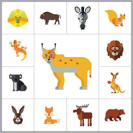 yak: Animal Icon Set. Lynx Lizard Fox Hare Head Bear Koala Lion Face Red Squirrel Brown Moose Yak Kangaroo Boxer Mandrill Head Zebra Head Illustration