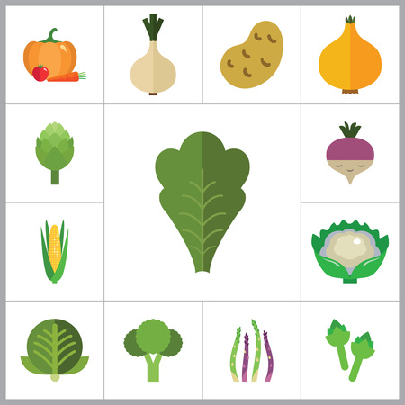 thirteen: Green food icons set with broccoli, cauliflower and corn cob. Thirteen vector icons Illustration