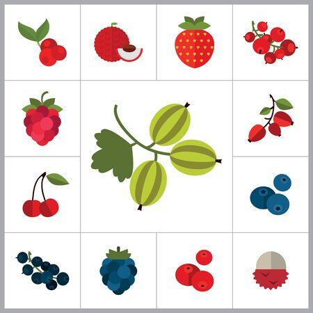 Berry Icon Set. Cranberry Schwarze Johannisbeere Brombeere Heidelbeere Dogrose Stachelbeere Rote Johannisbeere Himbeere Erdbeere Preiselbeere Kirsche