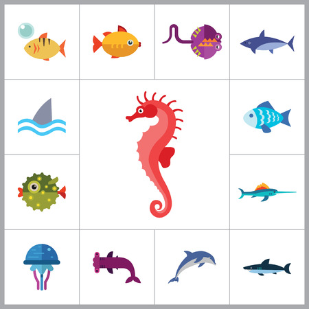horsefish: Fish icons set with dolphin, shark and seahorse. Thirteen vector icons